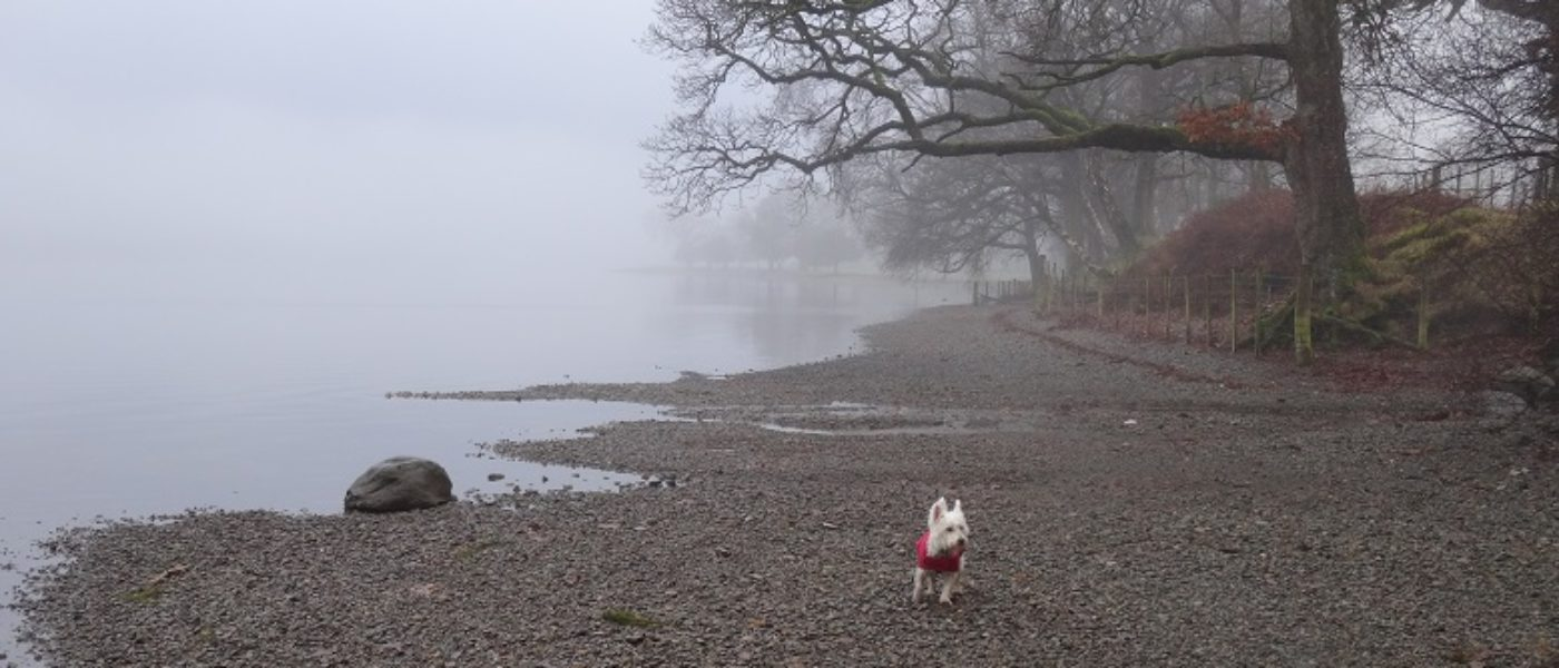 Grey Coniston Water