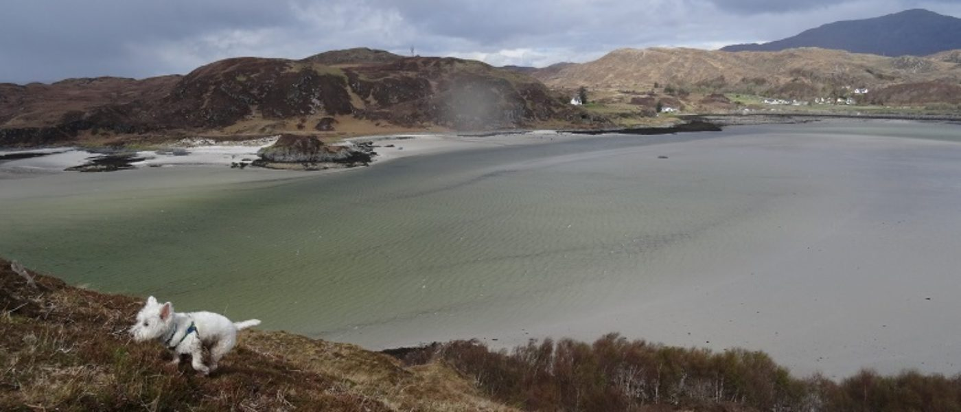 The Sands of Morar