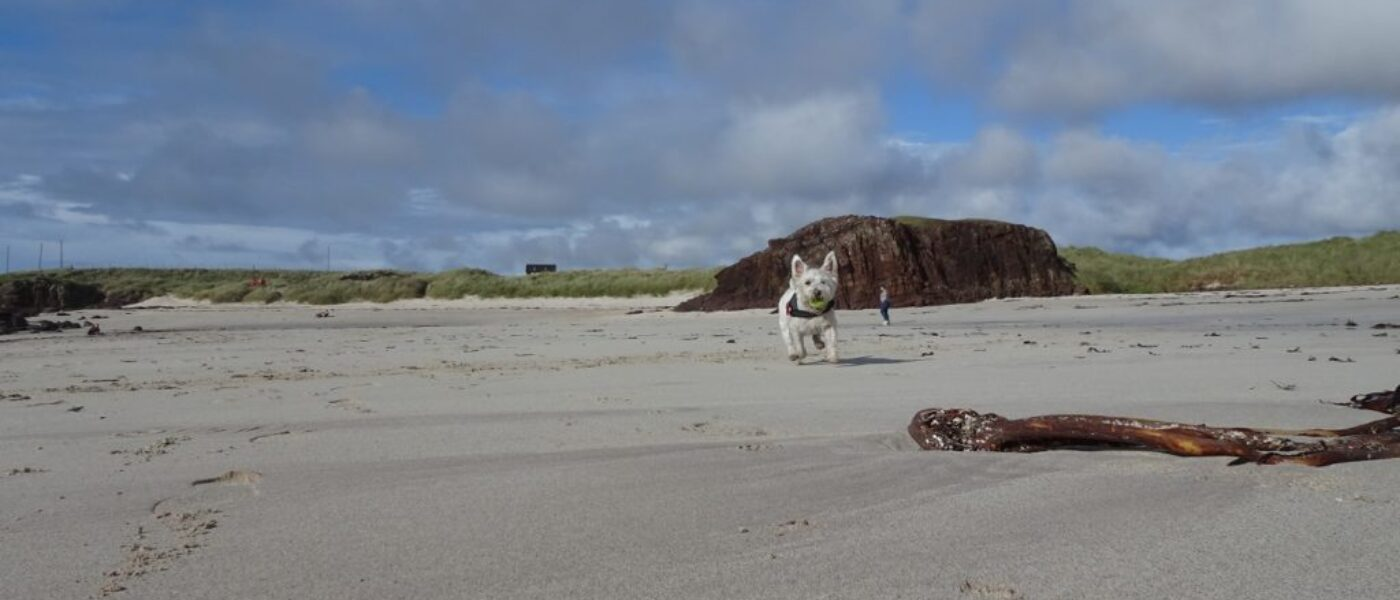 Beaches of Wester Ross