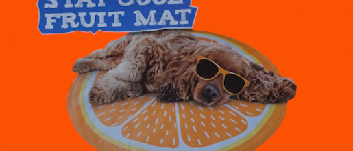 Chilli Paws Fruity Cool Mat