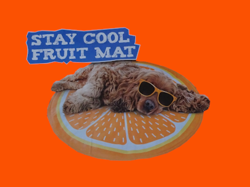 chilly_pawfrontcoolmat