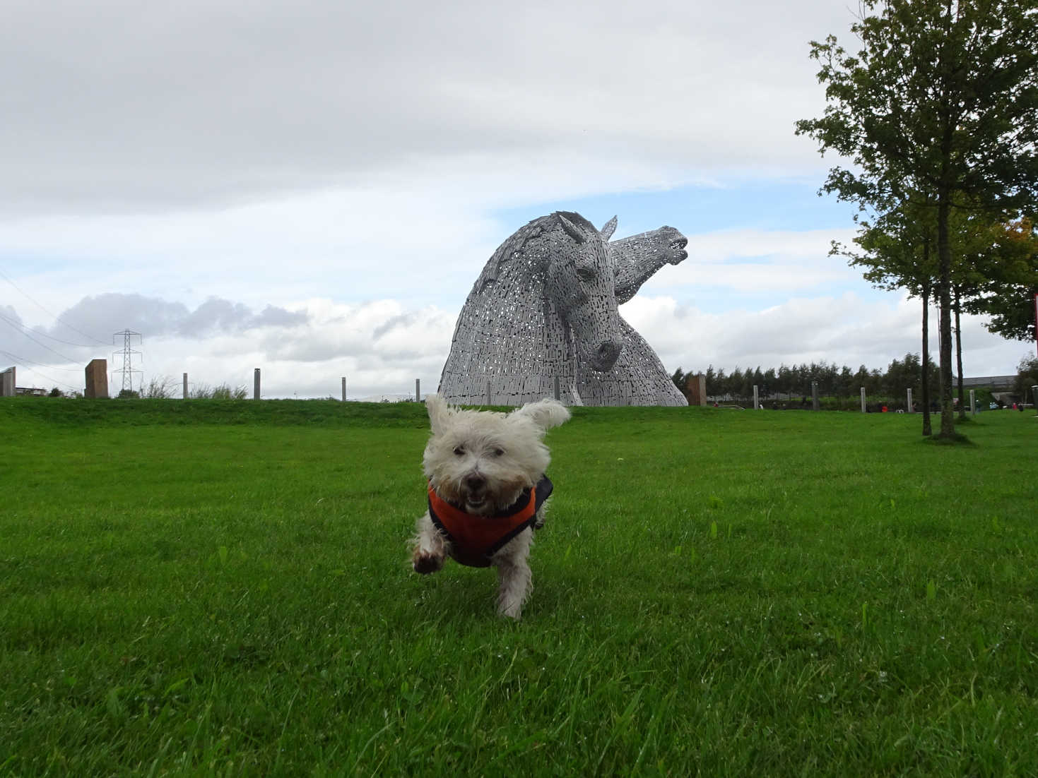 poppysocks playing at the kelpies