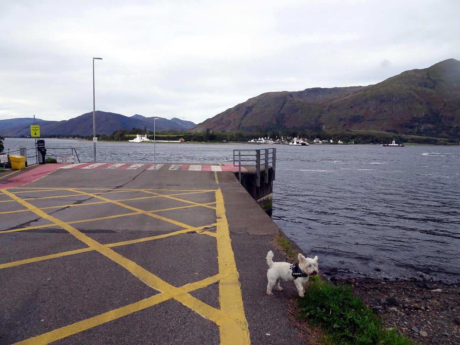 poppysocks at the corran ferry