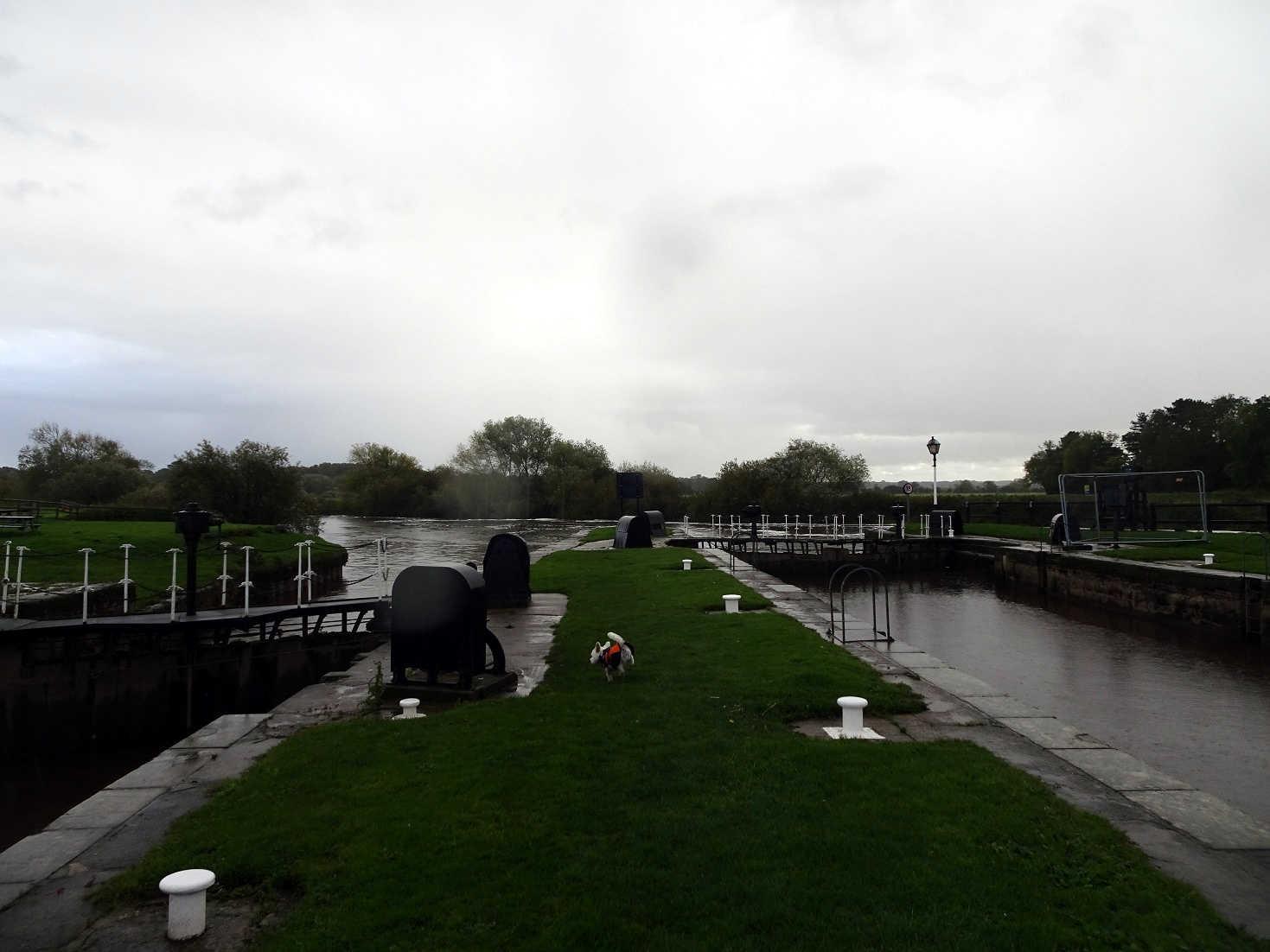 poppysocks at Nayburn Lock