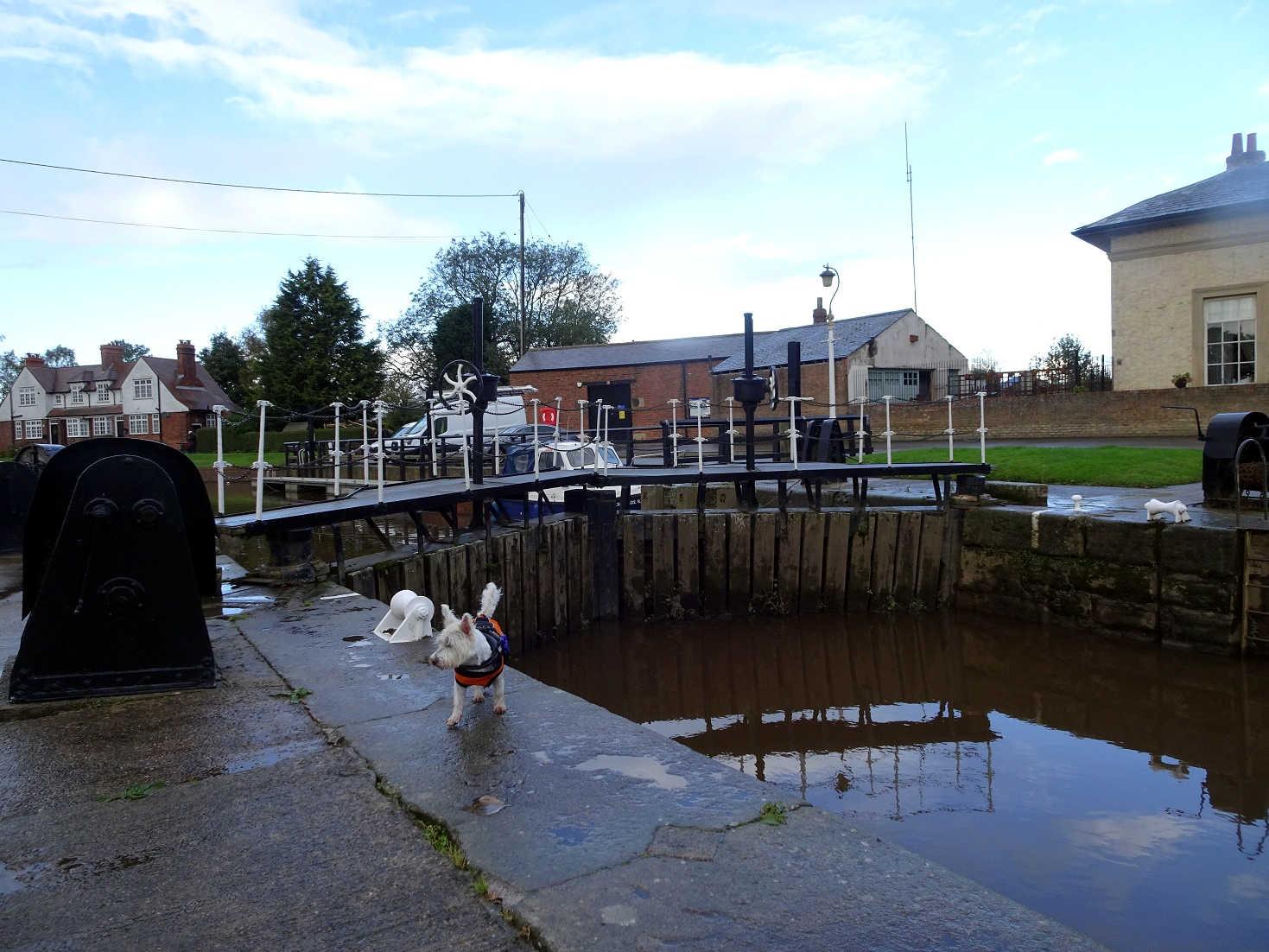 poppysocks crossing Nayburn Lock