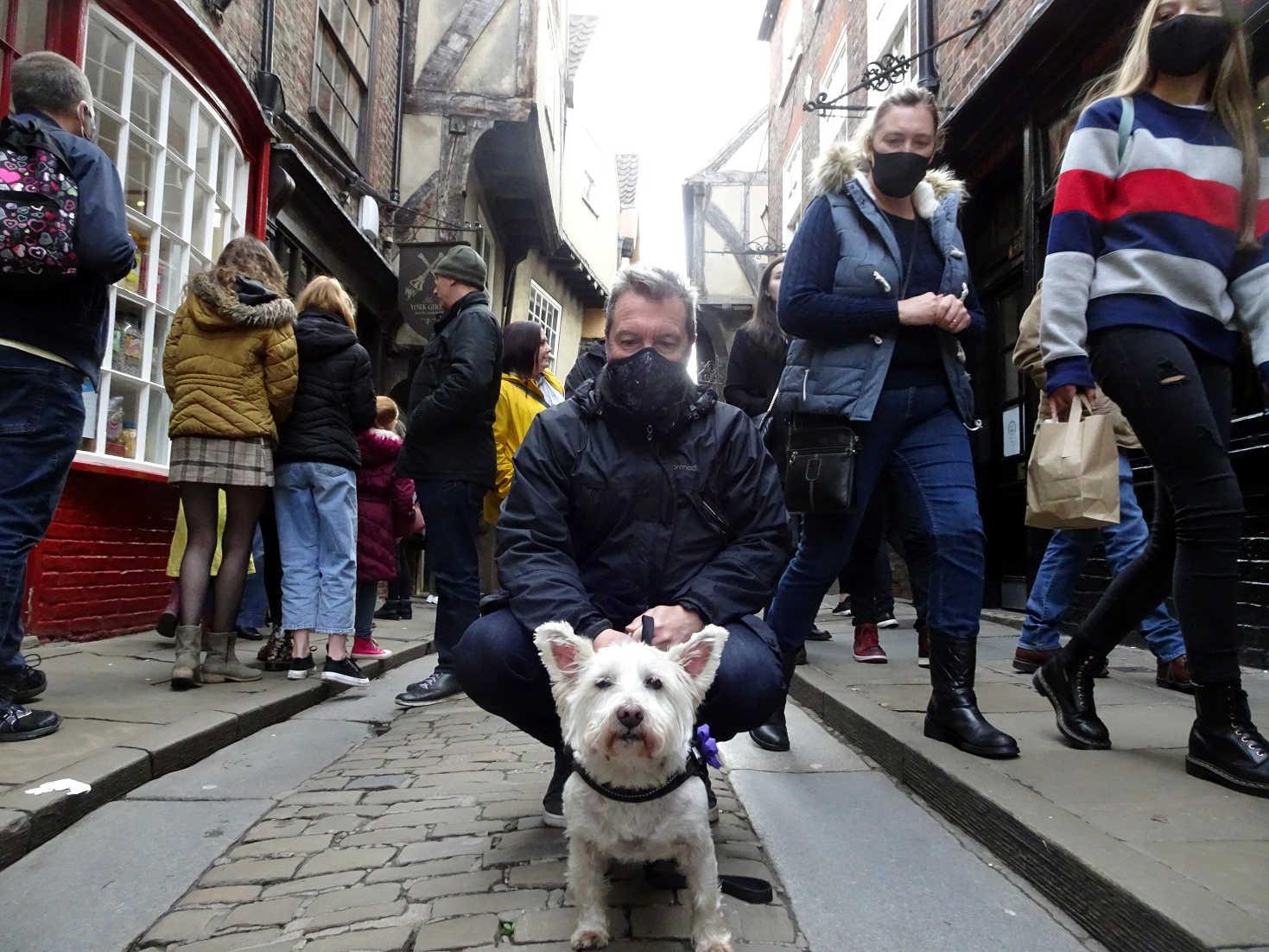 poppysocks social distancing York style