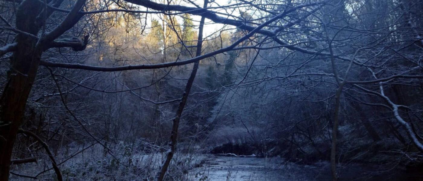 Frosty Linn Park