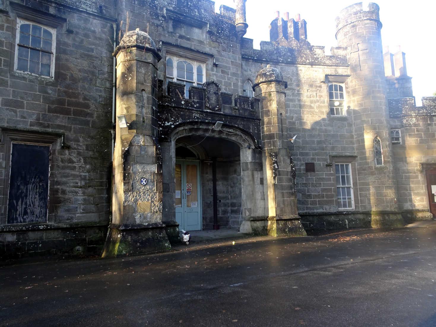 poppy the westie at balloch castle
