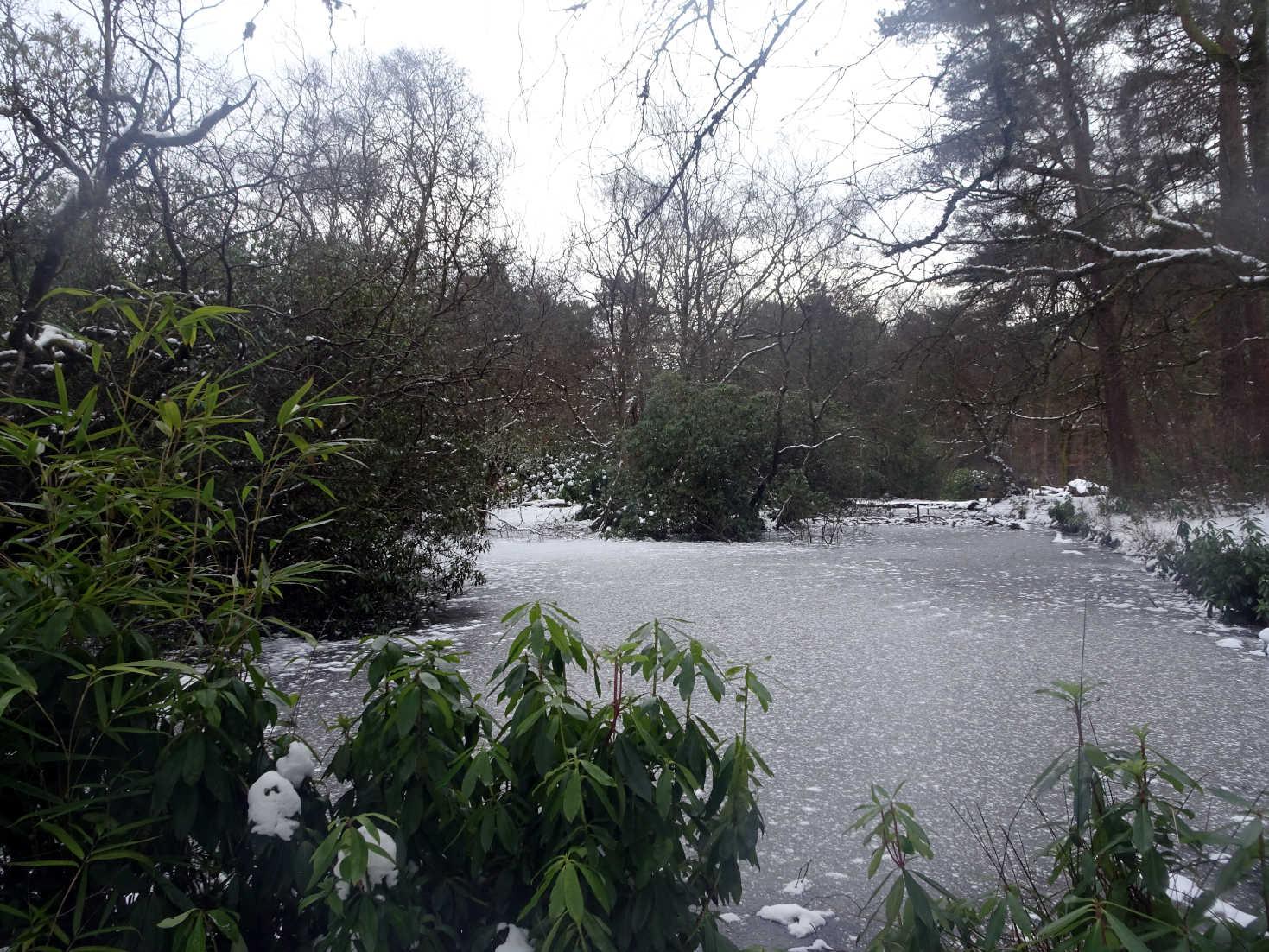 pollock park pond