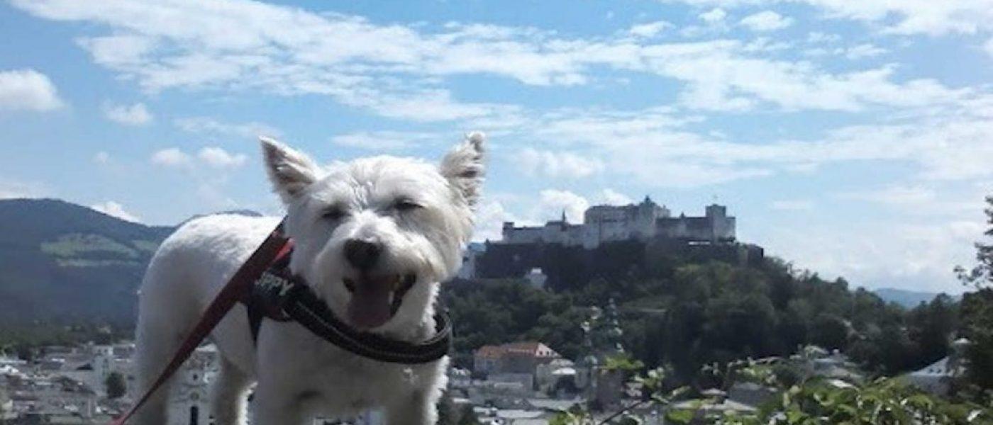 Salzburg, the hills are alive!