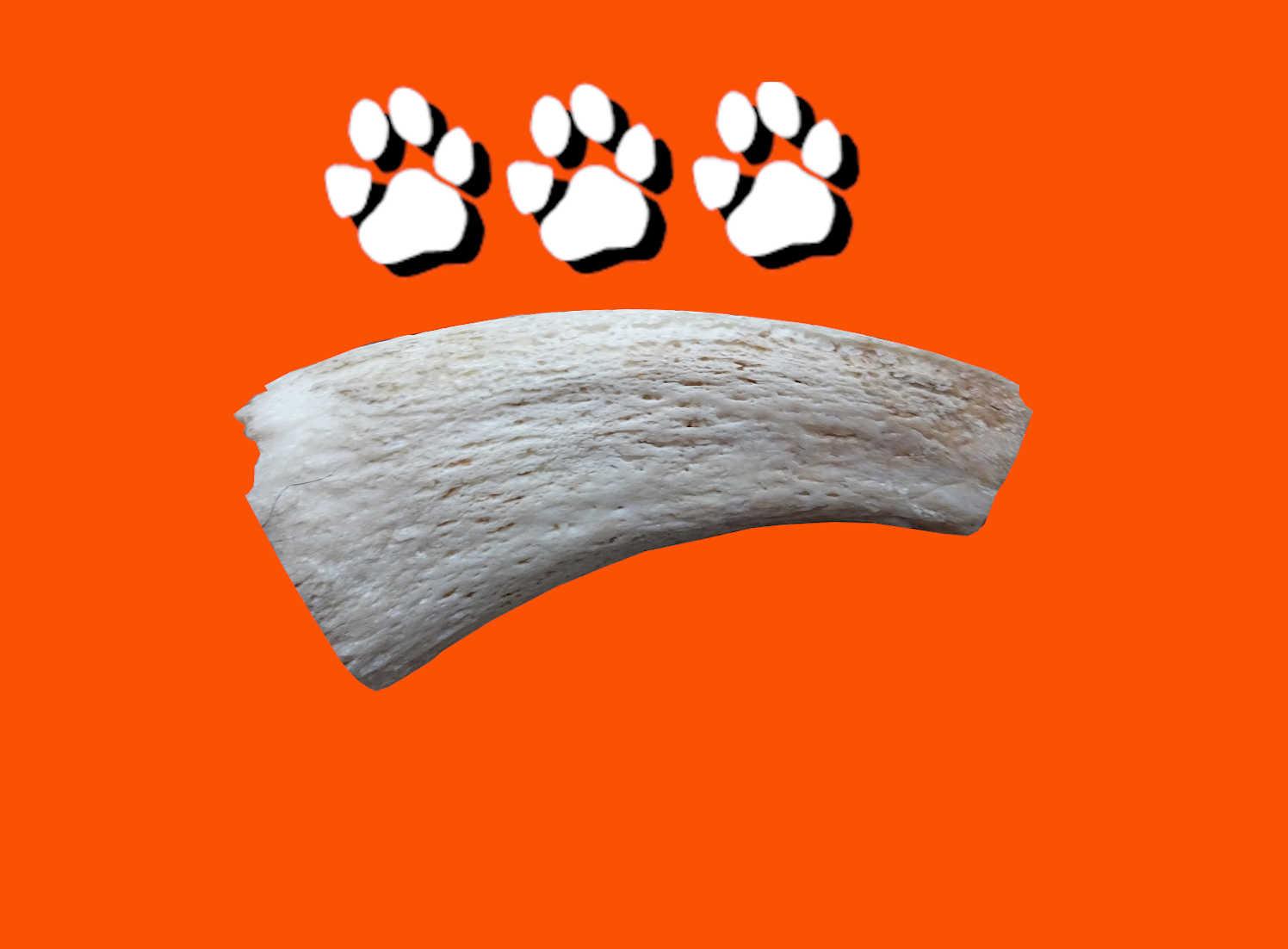 buffalo horn inner 3 paws