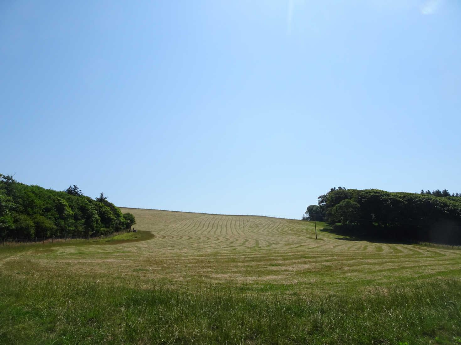 fields in portpatrick