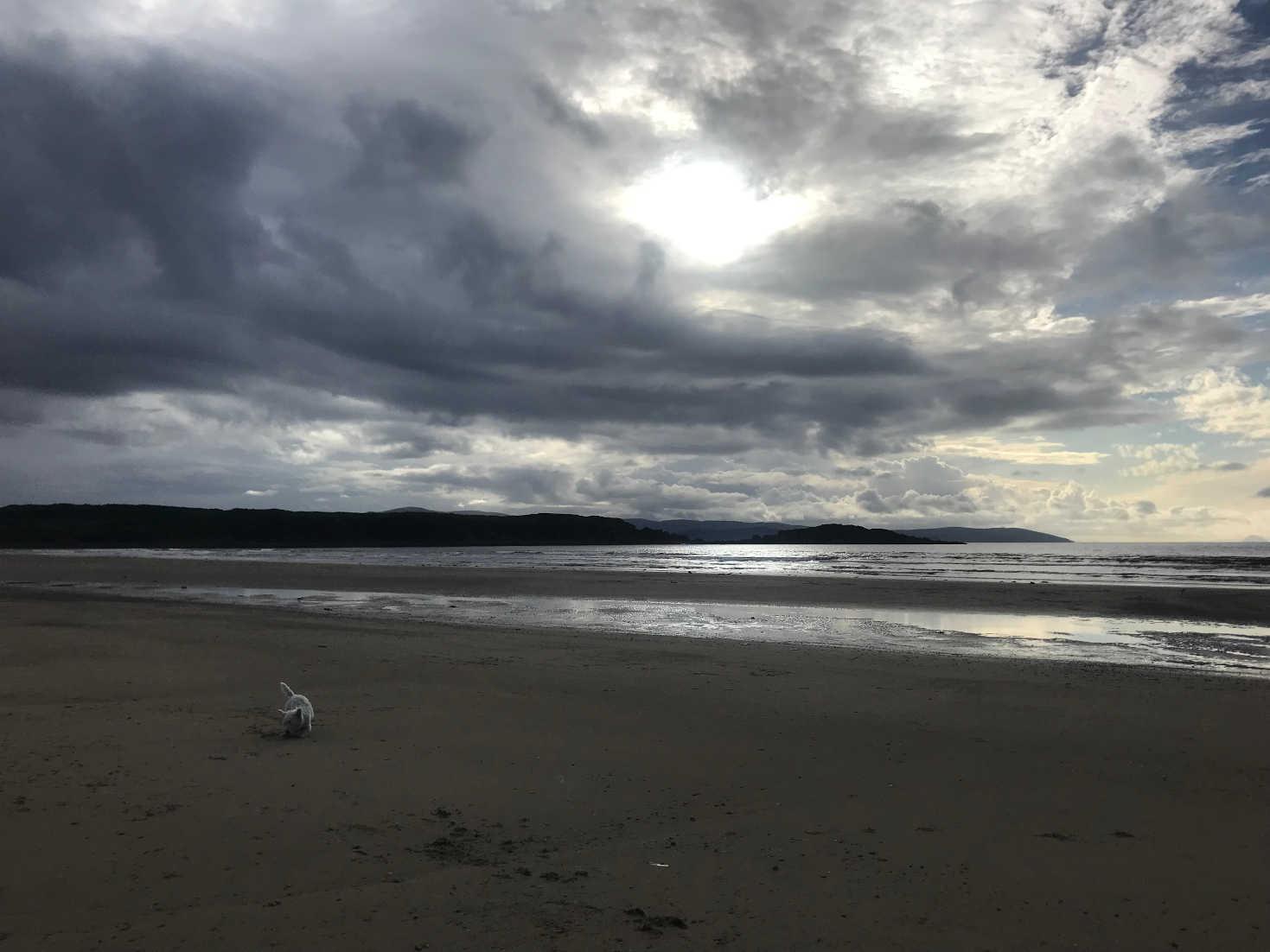 poppysocks on caradale beach in the morning